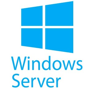 Windows Server Blue logo